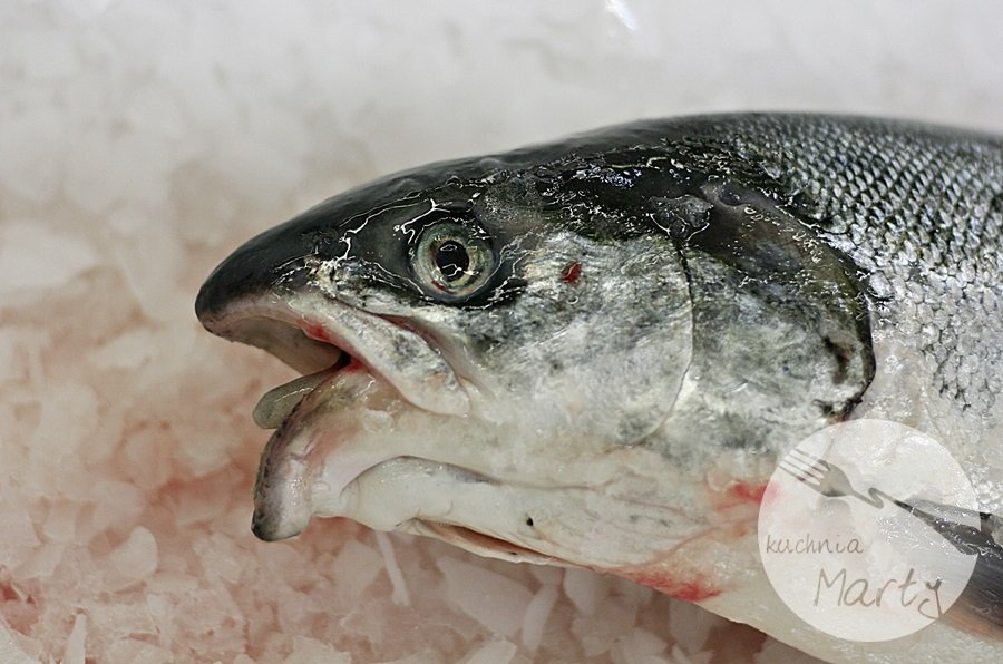 1464.900 - Świeżą rybę kupuj z głową! Czyli jak ocenić świeżość ryby