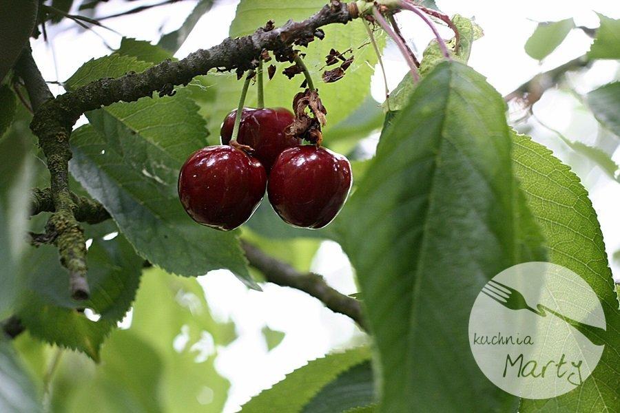 Owoce sezonowe – czereśnie