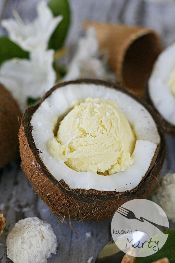 8678.900 - Lody kokosowe