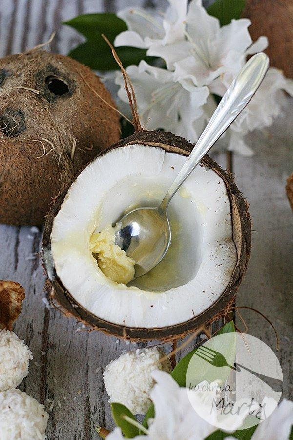8696.900 - Lody kokosowe